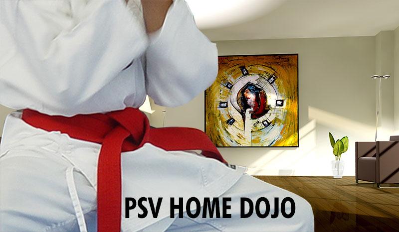 Foto vom Karate online Kurs
